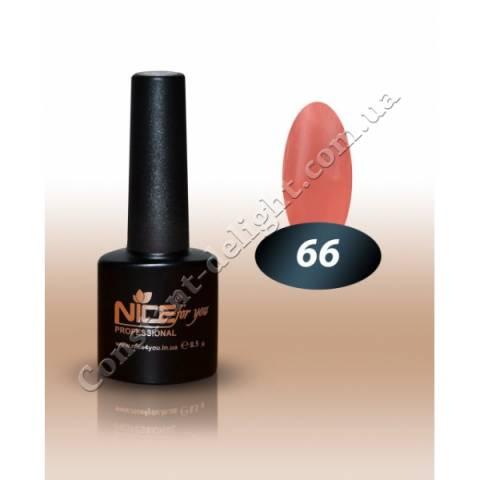 Гель-лак Nice for You 8.5 мл. №66