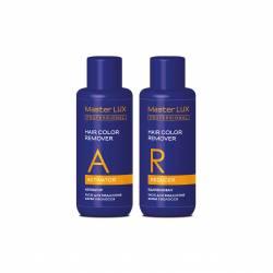 Набор для удаления краски с волос Master LUX Professional Hair Color Remover 2x100 ml (фото 2)