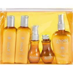 Набор тестеров для сухих волос в косметичке Angel Professional Paris Set (sh100ml + con100ml + spr80ml + crhair50ml + gel50ml)