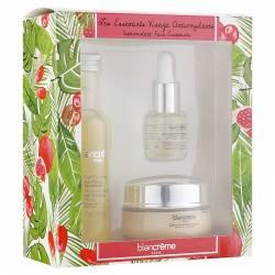 Подарочный набор для лица Трио Антиоксидант Blancrème Antioxidant Face Essentials