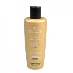 Шампунь антижелтый Hair Company Anti-Yellow Inimitable Blonde 250 ml